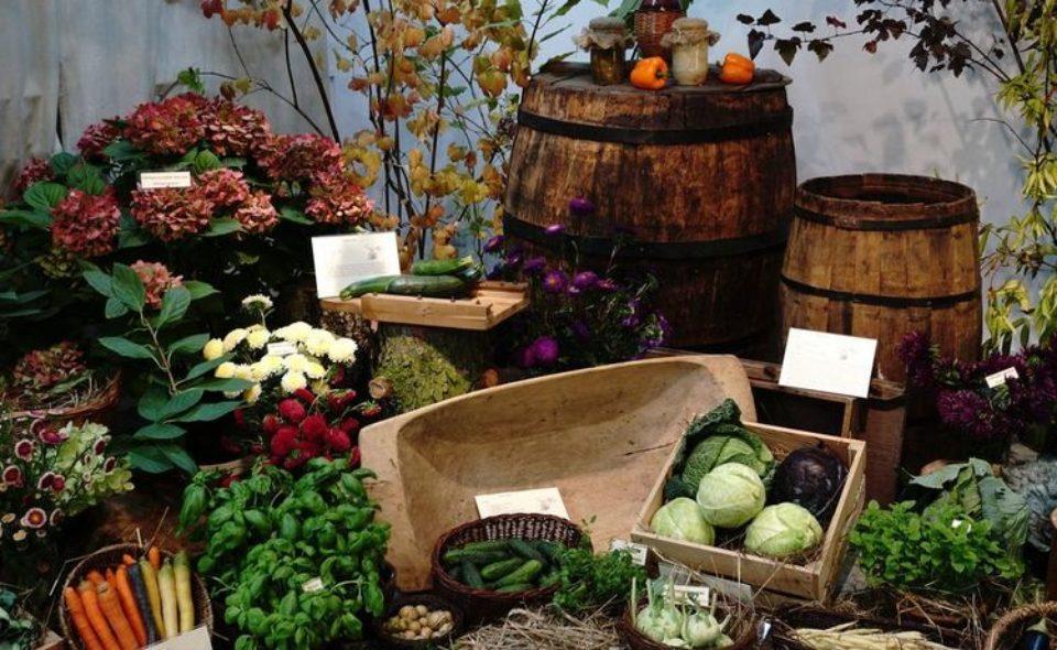 """Wystawa """"Owoce, warzywa, kwiaty"""" <span class="""