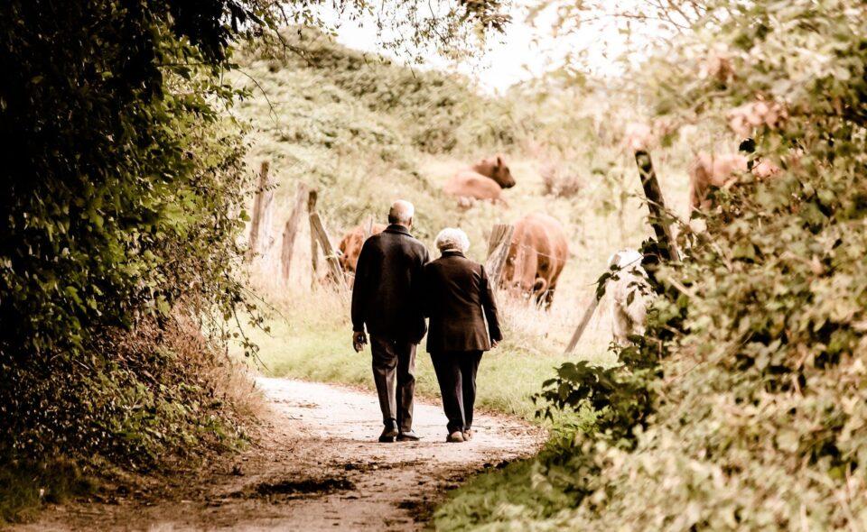 Dzień babci i dziadka – słuchaj starszych