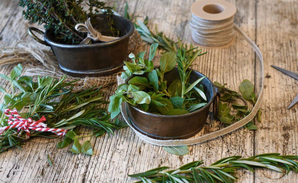 Domowe apteczki dworskie – skarbnice zdrowia i smaku