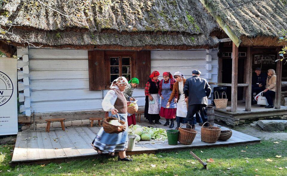 Tradycyjne kiszenie kapusty w Muzeum Wsi Lubelskiej! Zwyczaj wart ocalenia!